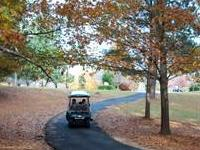 Golf cart on one of Peachtree City's paths