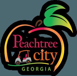 Police Department Peachtree City Ga